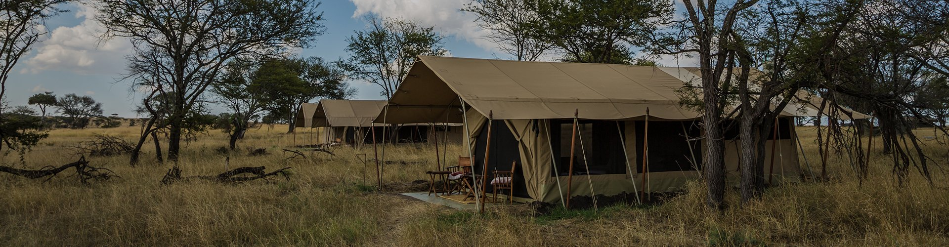 Best Tips for Bush Camping for Beginners